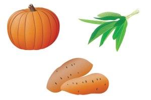 Pumpkin, Sage, Yam